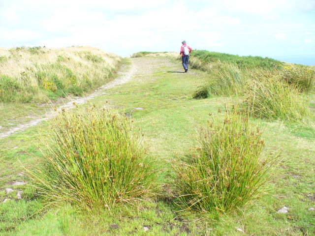 Gower Way, Cefn Bryn