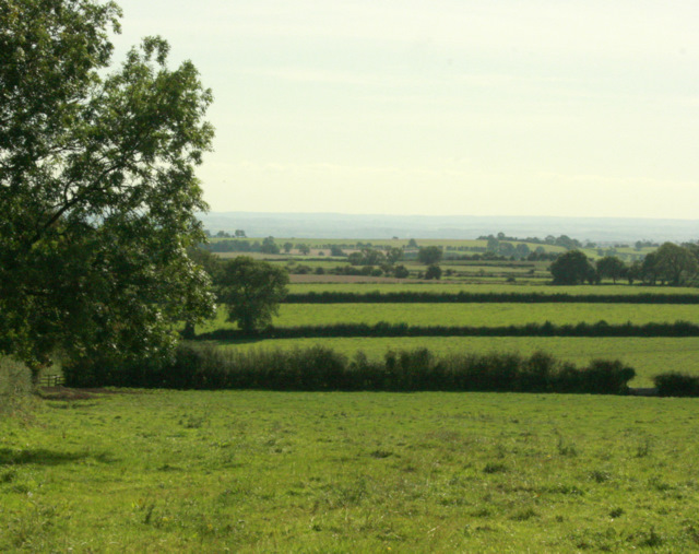 2009 : South from Bolter's Lane