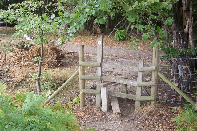 Stile into King's Wood
