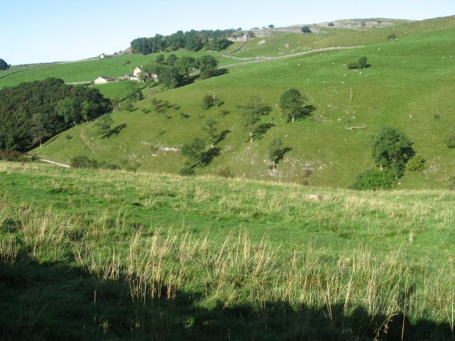 Towards Clapdale Farm from Long Lane