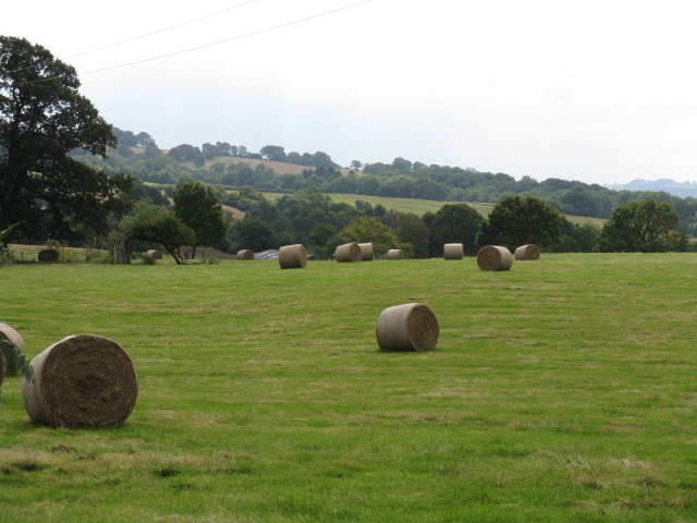 Hay Rolls Near Worles Common