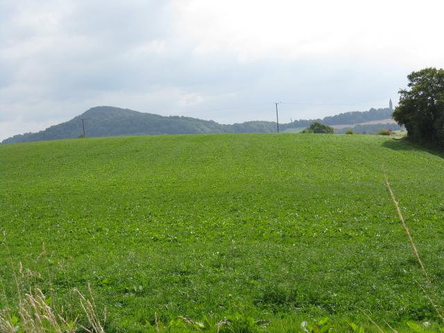 Hillside At Fartown Farm