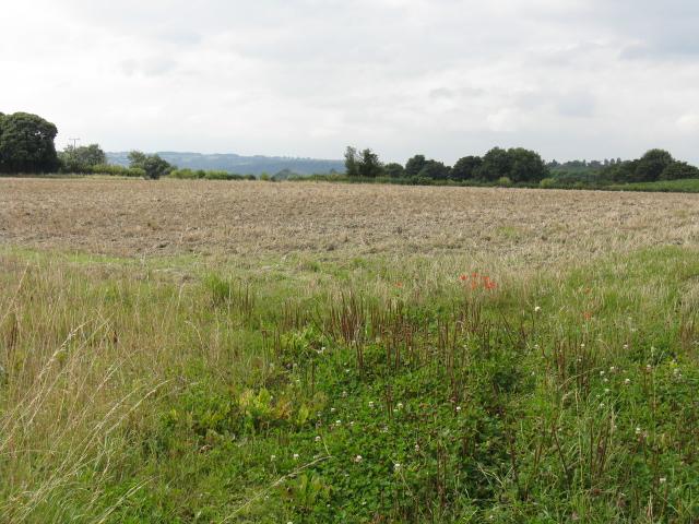 Stubble Field Near Pensax