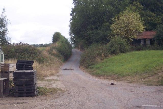 Bridleway from Stone Stile Farm