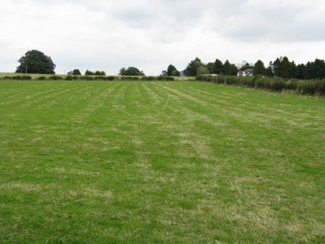 Menithwood Grassland