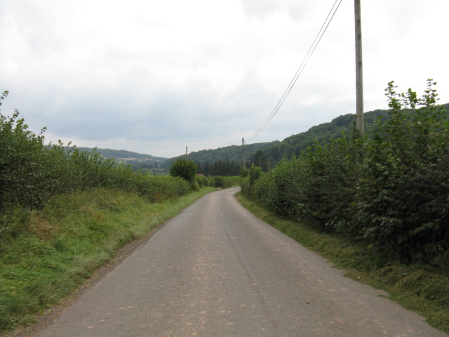 Lane To Shelsey Walsh