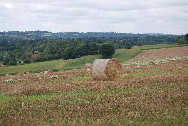 Hay Bale by the Tunbridge Wells Circular Path