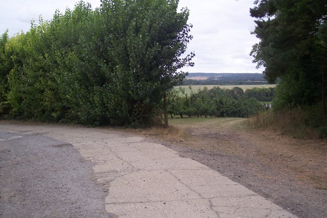 Footpath junction on North Downs Way
