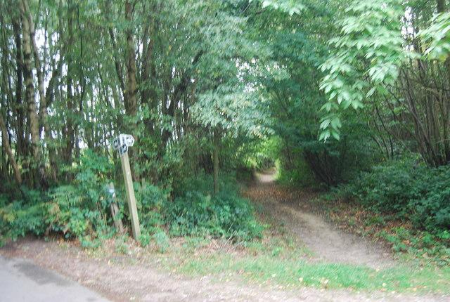 Bridleway off the Tunbridge Wells Circular Path, High Wood