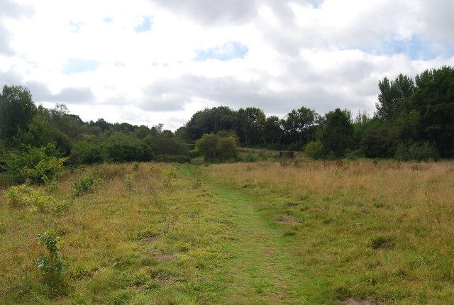 Tunbridge Wells Circular Path - the first field in East Sussex