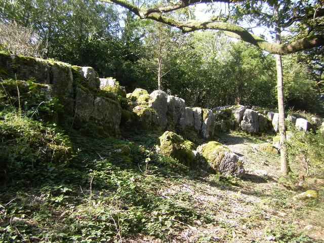 Limestone outcrop near Yealand Storrs
