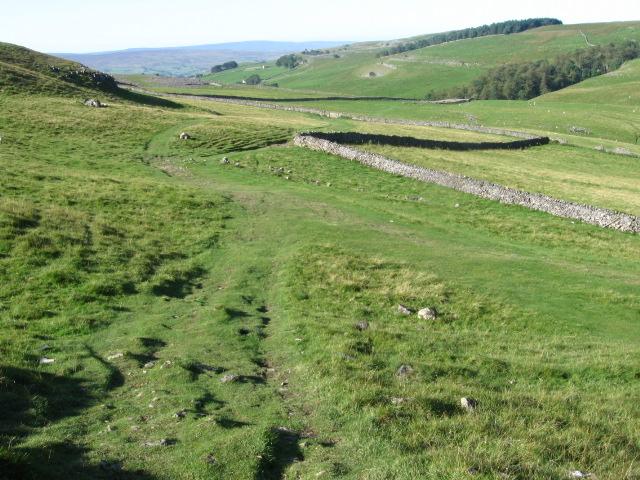 Footpath near Long Scar