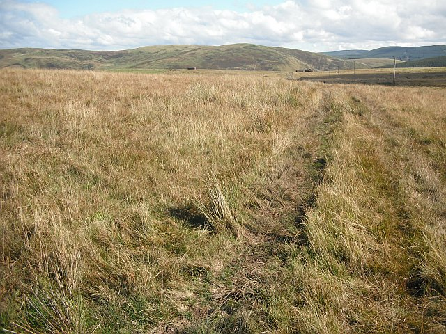 Rough grazing, Penchrise