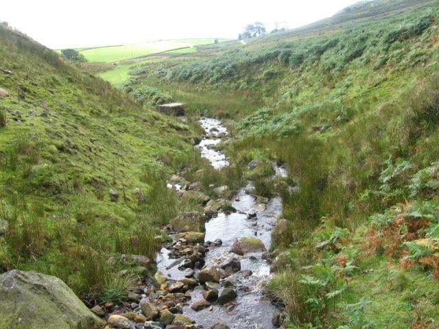 Moor Beck