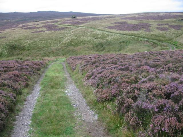 Track on Embsay Moor towards Waterfall Gill