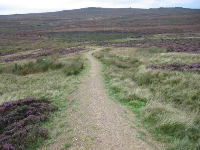 Footpath on Rylstone Fell