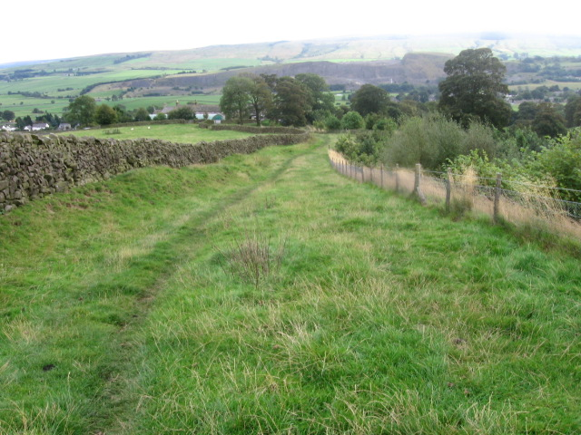 Footpath towards Embsay by Milking Hill Wood