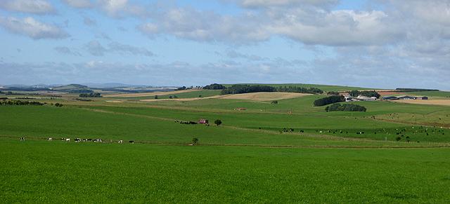 Farmland near Greenlaw