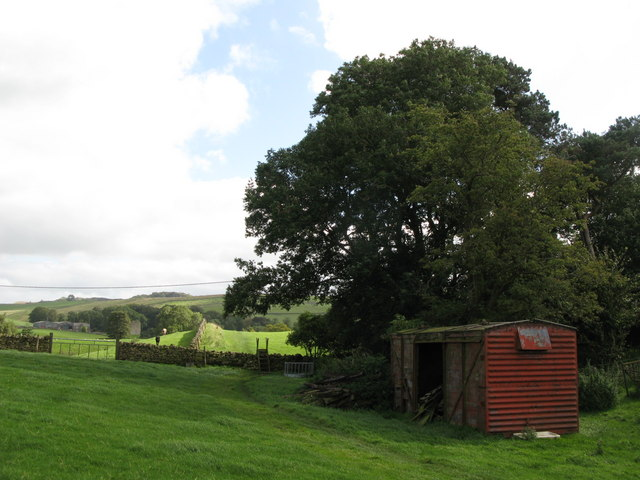 Hadrian's Wall Path near Wallend Farm (2)