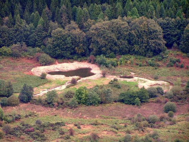 The new pond loop at Taliesin