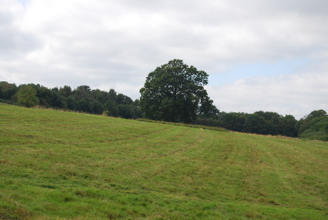 Looking West from the Tunbridge Wells Circular Path near Chase Wood