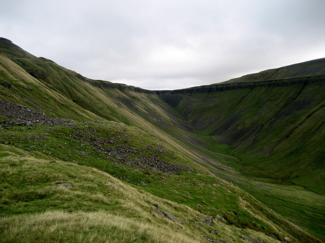 A View up High Cup
