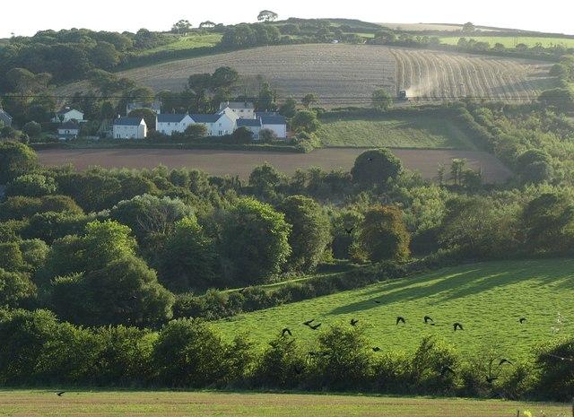 Widdicombe