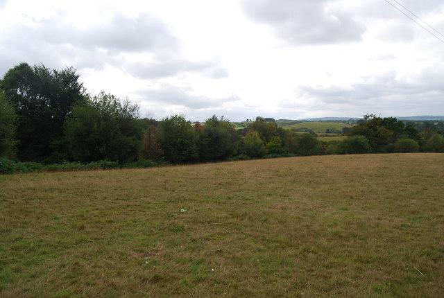 Field just south of the Tunbridge Wells Circular Path, Eridge Park