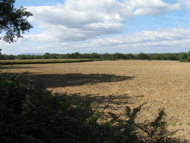 Recently ploughed  field on Tittlesfold Farm