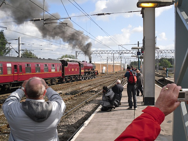 Admirers of steam