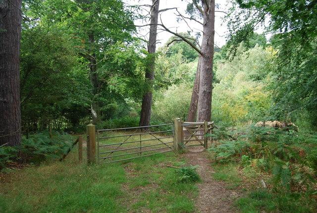 Kissing Gate on the Tunbridge Wells Circular Path, Eridge Park