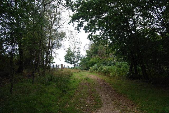 Tunbridge Wells Circular Path by Eridge Old Park