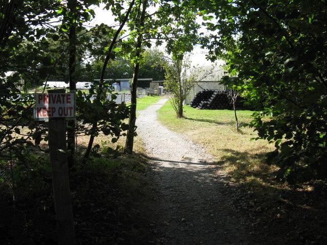 Nursery near Tittlesfold Farm
