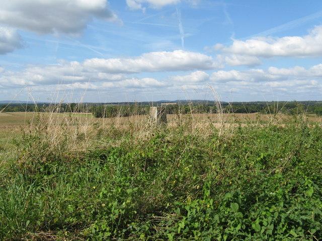 Trig point alongside Haven Road