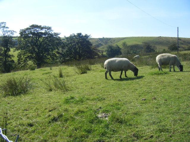 Clough Head and Clough Head Hill