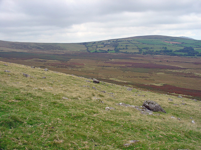 Rough pasture on the slopes of Preseli