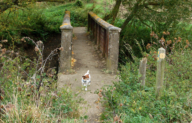 Footpath from Bascote to Southam (4)