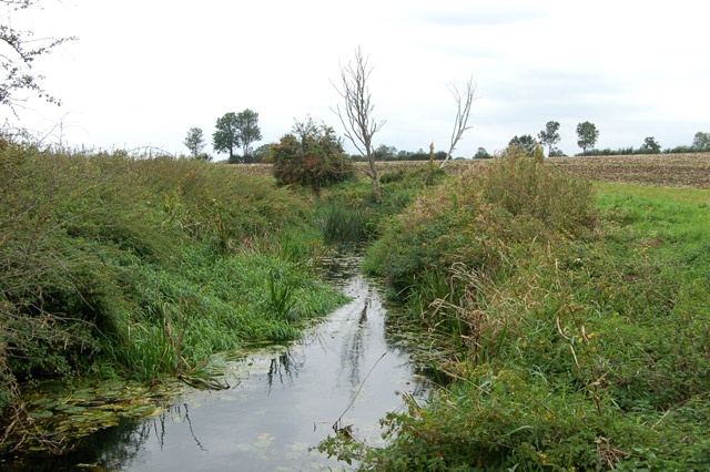 Looking north at the River Itchen near Bascote