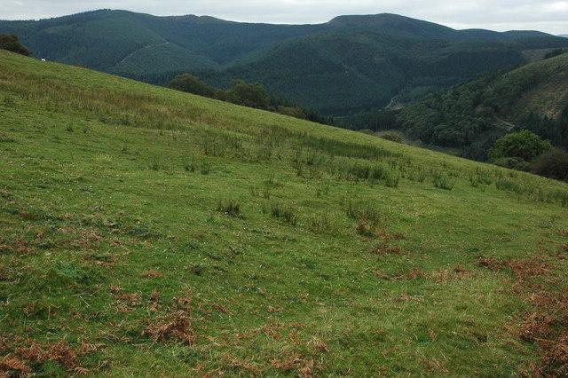 Grazing land above Afon Angell valley