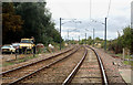 TL5787 : Railway south of Littleport by Andy F