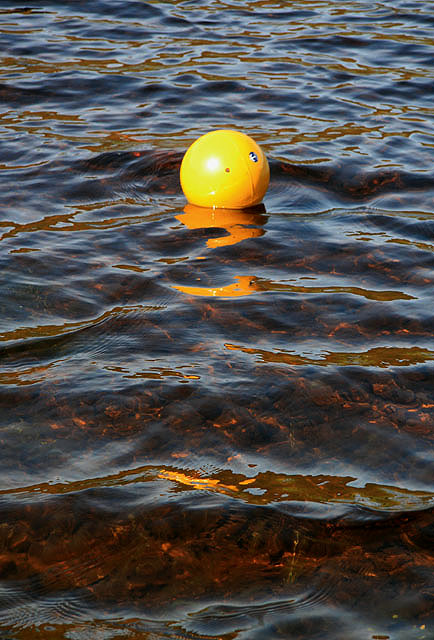 A buoy on St Mary's Loch