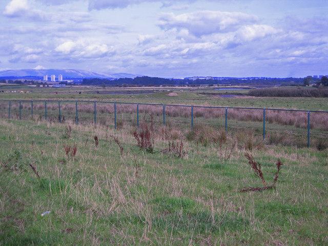 Farmland, Yonderton Farm
