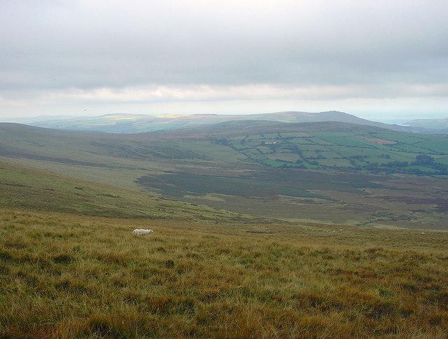 Peat-filled valley near Brynberian