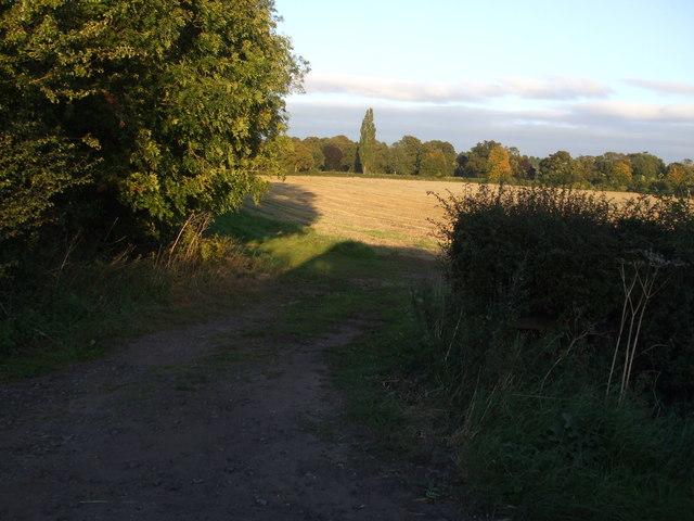 Field on The Park towards Hotham Hall