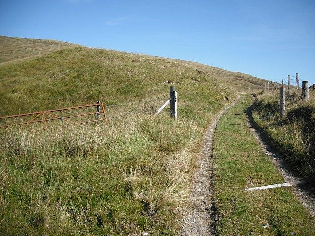 Fence, Gorton