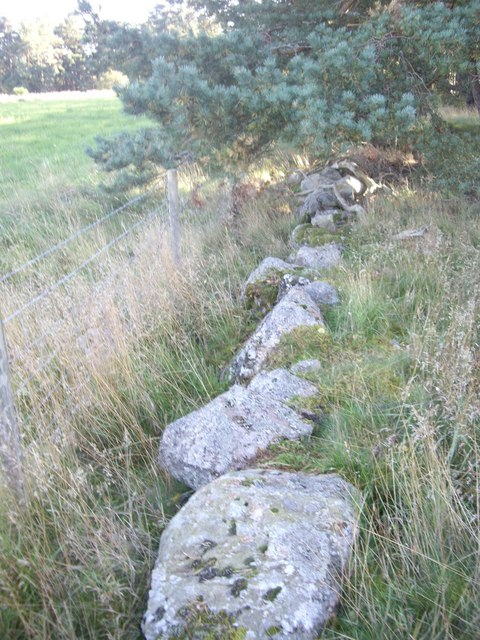 An old stone boundary wall