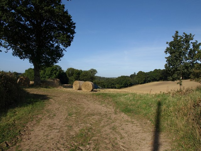 Straw bales above Higher Brook