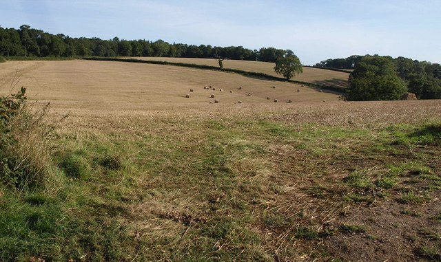 Fields above Mudly Bottom