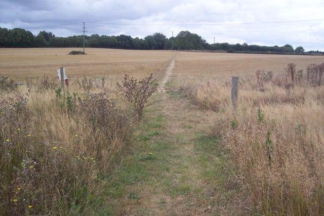 Footpath junction near Chartham Corn Mill