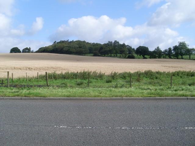 Highpit Plantation